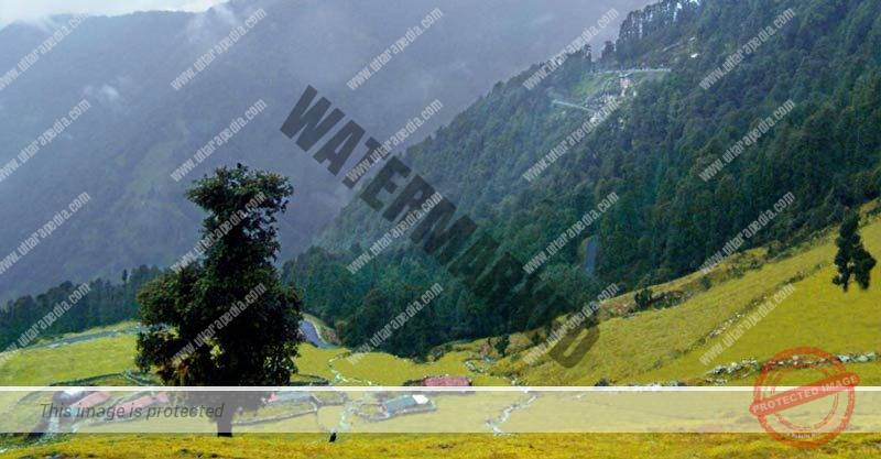 Tourism in Uttarakhand
