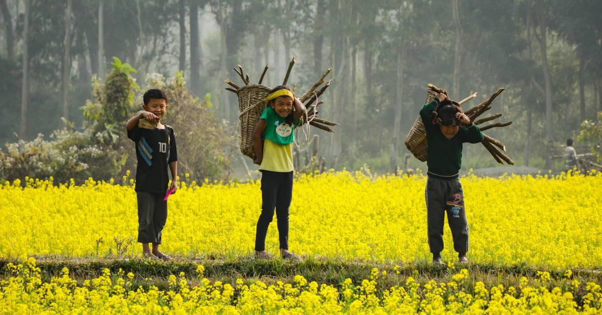 कुसुम दी- कितने ही युवाओं के भविष्य को स॔वारने में उन्होंने योगदान दिया