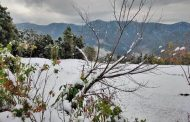 उत्तराखंड में सर्दियों के कुछ खूबसूरत डेस्टिनेशन