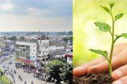 एक वृक्ष काटने पर लगाने होंगे दस पौधे, देहरादून नगर निगम का फैसला